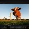 Landschaps fotografie | Natuur fotografie | Sfeer fotografie | Architectuur fotografie | Interieur fotografie | Evenementen fotografie